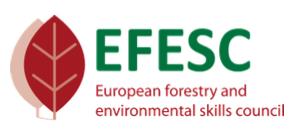 EFESC_logo